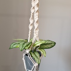 Natural tone Medium Macrame Plant Pot Hanger