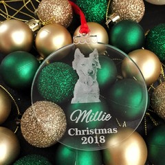 Personalised Christmas ornament for pet lover