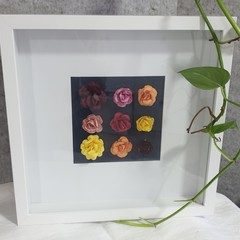 Framed Paper Flowers - 2 Colour Options