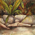 THE ROCK POOL - AN ORIGINAL WATERCOLOUR PAINTING