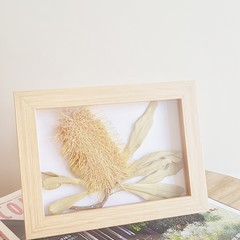 Dried Banksia framed art || wall art, home decor, dried flowers, botanical art.