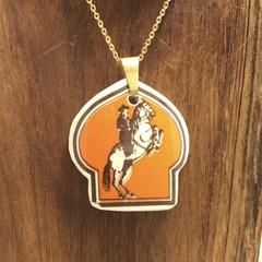 Lipizzaner Rider and Horse