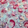 Contemporary abstract floral painting on canvas - Free Shipping Australia