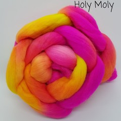 Hand Painted Wool Roving- HOLY MOLLY