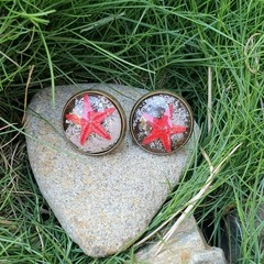 Christmas stars - Real Starfish earrings, mermaid jewellery