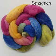 Hand Painted Wool Roving- SENSATION