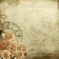 TIMELESS ROSE ENVELOPES
