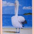 ANIMAL ART CARDS featuring art by Ian Holland - Pack of 5 plus 1 free card