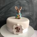 Peter Rabbit Cake Decorating Set