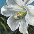 White Lily, Original Acrylic Floral painting, White Flower, Gift Idea, Colourful
