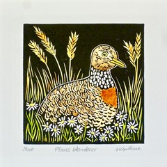 Plains Wanderer Lino Cut Print / Australian Bird Print / Wildlife Art / Original