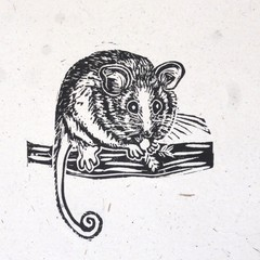 Pygmy Possum Linocut Print/ Australian Animal / Marsupial / Gift for her / Child
