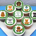 Aussie Animals Edible Icing Cupcake Toppers - PRE-CUT Sheet of 15 - EI260C