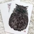Original picture postcard - Black catball02