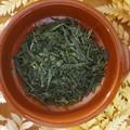 DIY Tea Kit - Green Papaya