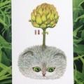Original picture postcard - Bulbous cat002