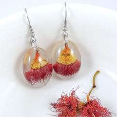 Madeit for Firefighters, Gum tree flower earrings