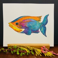 Tropical Fish - Ink Illustration with Watercolour