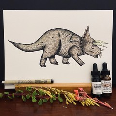Triceratops Dinosaur - Ink Illustration with Watercolour