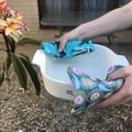 Australian Platypus, Gum Blossom and Bilby Pot Holders Gift