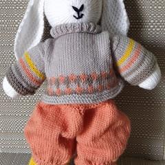 Rabbit Roy