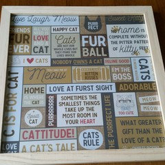 Cat Lovers frame