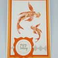 Swimming Koi - Gift Card