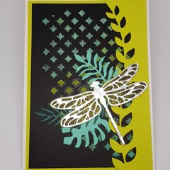 Dragonfly Dreams - Gift Card