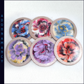 Set of 6 Resin Coated Round Coasters: Various Colours