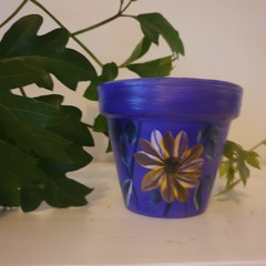 Mini purple with flower