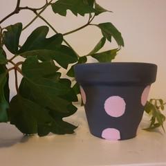 Mini grey with white polka dots