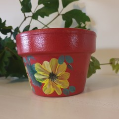 Red pot yellow flowers