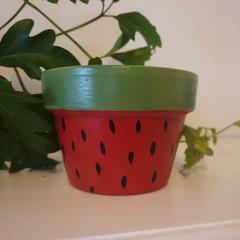 Watermelon print pot