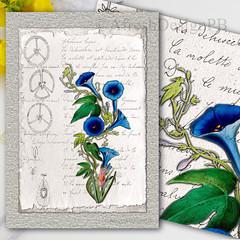Botanique Notebook 2 Printable