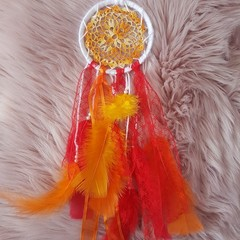 Dream Catcher/Wall Hanging