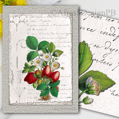 Botanique Notebook 4 Printable