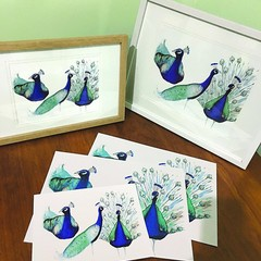 Framed 3 Peacock Prints - 2 Sizes Available