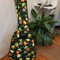 2 Pocket Gig Guitar Bag