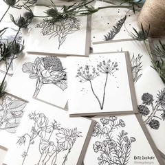 Pack of Botanical Greeting Cards, Australian Native Flowers