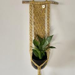 Jute plant hanger gold