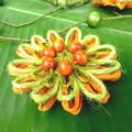 Natural Fibre Beaded Flower Hanging Garland Tropical Summer Parrot Wall Decor