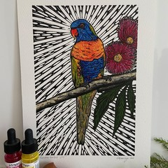 Australian Birds - Rainbow Lorikeet 1/25- Linoprint and Watercolour