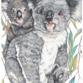 Koala and Joey Print