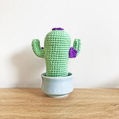 Crochet Cactus with Purple Flowers in Blue Pot