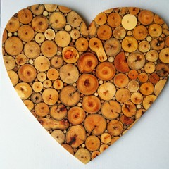 Fallen branch heart
