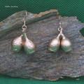 Genuine gum nut earrings - copper plated Australian flora jewellery