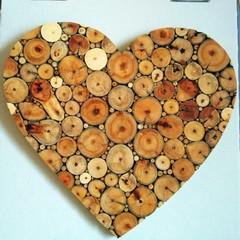 Fallen Branch Heart 45