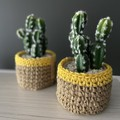 Crochet jute basket with cactus