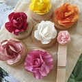 Paper Flower Magnet Set