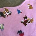 Cloth pad -Regular [Japan]